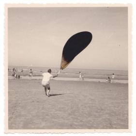 photographie, aile de libellule, 8,7 x 8,7 cm