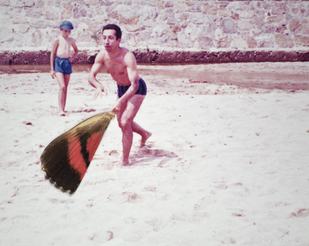 Collage Second Souffle 19, Photographie anonyme couleur 13 x 9 cm, aile de papillon