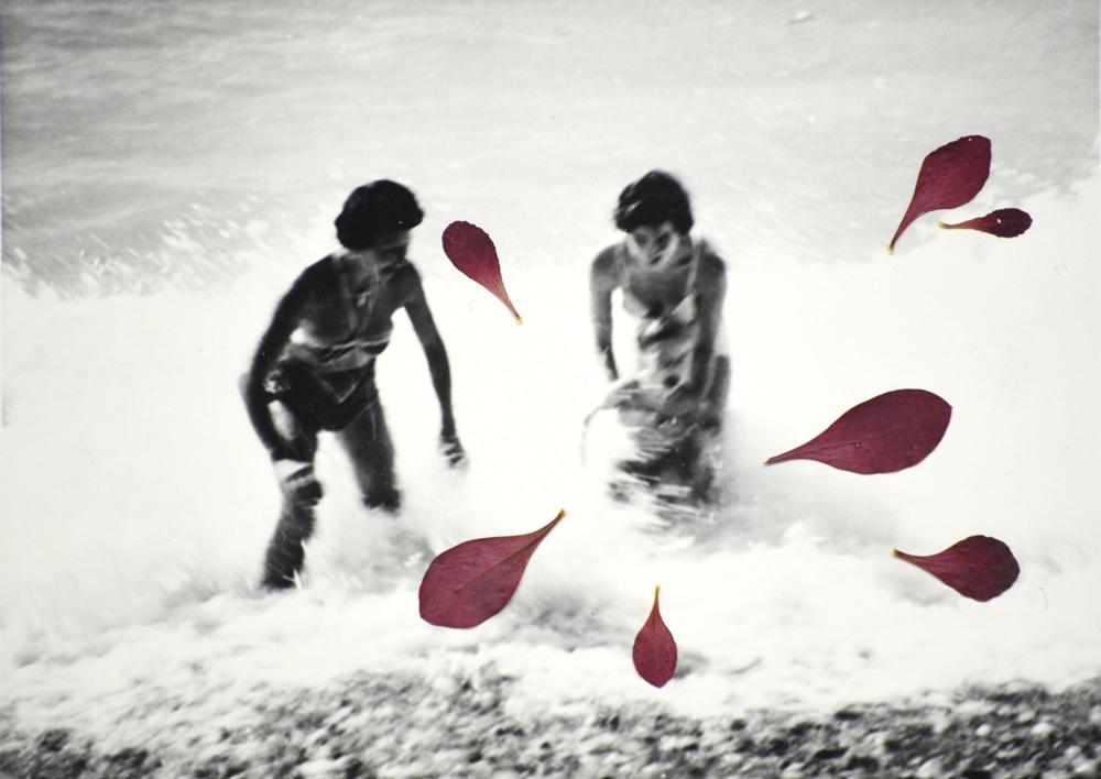 Collage Second Souffle 33,  Photographie anonyme noir et blanc 10,7 x 8,7 cm, feuilles