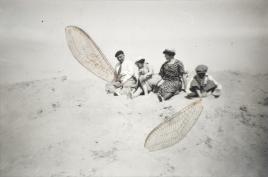 photographie argentique, ailes de libellules,